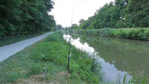 Welsangeln am kleinen Kanal