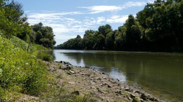 Blick auf den Fluss Körös in Ungarn