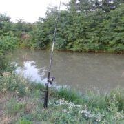 Welsangeln am kleinen Kanal von Fluss Raab