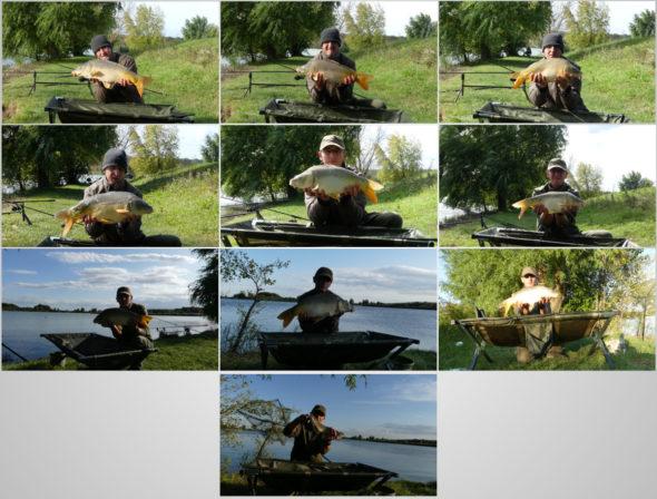9 Karpfen gefangen und ein Wels als Beifang