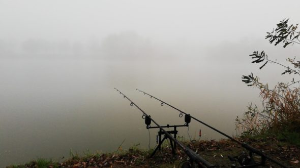 Dichter Nebel in der Nacht und am Vormittag