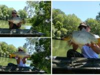 Statt Silberkarpfen drei Karpfen am Fluss Körös gefangen